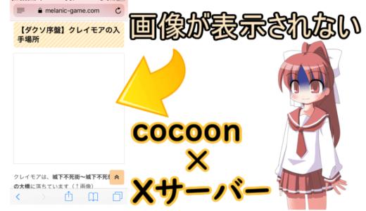 cocoon×エックスサーバーで画像が表示されない場合【WordPress】